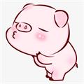 小猪向钱冲