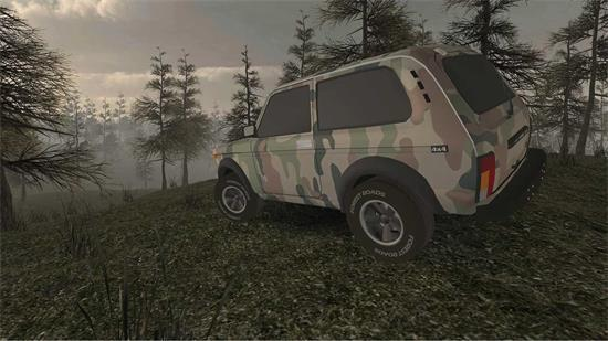 森林驾车图3
