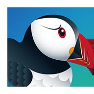 蓝色puffin浏览器国际版