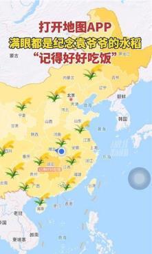 高德地图水稻图2