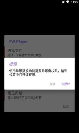 FW Player图1